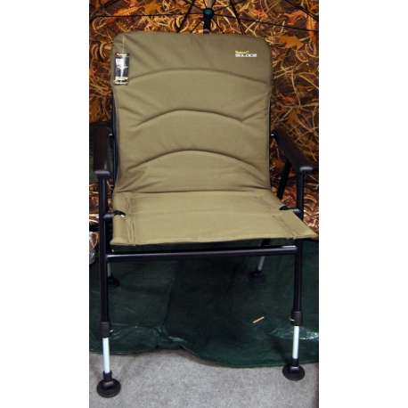 Solace Comforter chair - Wychwood