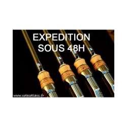 Torrix 10pieds 3,25lb - canne carpe Cotes et Lacs